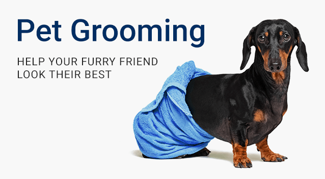 Professional Pet Grooming at Falls Road Animal Hospital